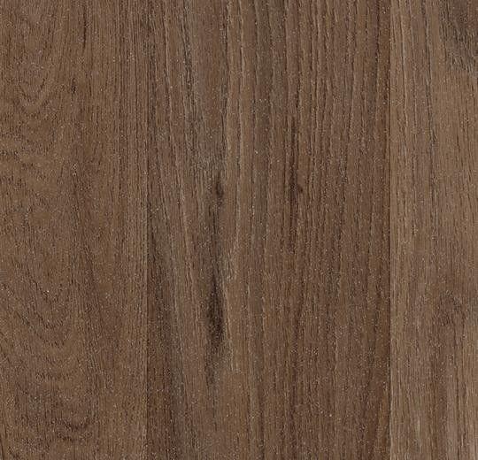 Линолеум Forbo (Eurocol) Surestep Wood 18792 - фото 1