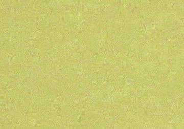 Линолеум Forbo (Eurocol) Marmoleum Fresco 3885 - фото 1