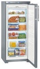 Холодильник Морозильные камеры Liebherr GNsl 2323