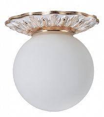 Настенно-потолочный светильник Divinare Накладной светильник 5007/20 PL-1