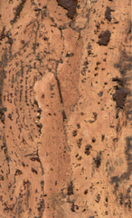 Пробковое покрытие Wicanders Dekwall Fiord Brown RY16001