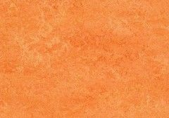 Линолеум Натуральный линолеум Forbo (Eurocol) Marmoleum Real 3241