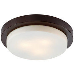 Настенно-потолочный светильник Odeon Light Holger 2744/3C