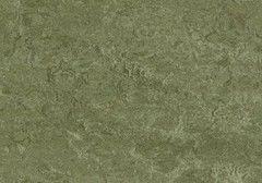 Линолеум Натуральный линолеум Forbo (Eurocol) Marmoleum Real 3255