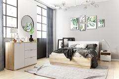 Спальня divan.by Стелла-1 Дуб Сонома модульная
