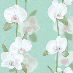 Обои Vimala Орхидеи 2197