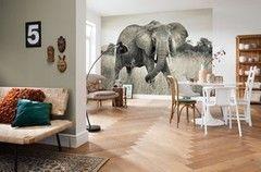Фотообои Фотообои Komar Elephant XXL4-529