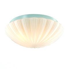 Настенно-потолочный светильник ST Luce Bagno SL495.502.03