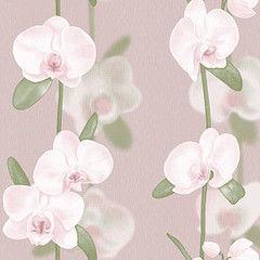 Обои Vimala Орхидеи 2194