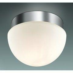 Настенно-потолочный светильник Odeon Light Minkar 2443/1A