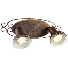 Настенный светильник Arte Lamp Focus A5219AP-2BR