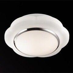 Настенно-потолочный светильник Odeon Light Baha 2403/2C