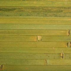 Декоративная стеновая панель Декоративная стеновая панель Бамбуковый рай Лайм (ламель 12 мм)