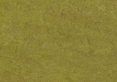 Линолеум Зеленый линолеум Forbo (Eurocol) Marmoleum Real 3239