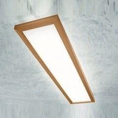 Настенно-потолочный светильник Linea Light Frame 71916