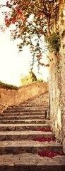 Фотообои Фотообои GreenBerry Дорога к замку 106