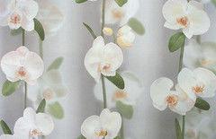 Обои Elysium Орхидея E17605