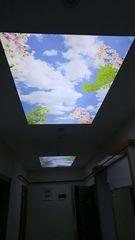 Натяжной потолок Лебтепроф Пример 44
