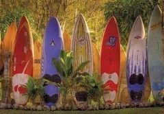 Фотообои Фотообои Komar Maui 8-902