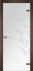 Стеклянная дверь Dariano Жардин (стекло прозрачное)