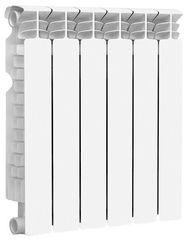 Радиатор отопления Радиатор отопления Fondital Astor S5 500/100