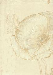 Обои A.S.Creation Aura Alterdom 94112-4
