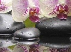 Плитка Плитка Березакерамика Азалия Панно Орхидея 4 25х35