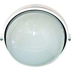 Промышленный светильник Промышленный светильник Feron НПО11-100-01