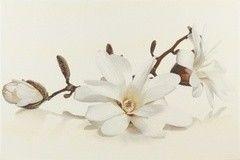 Плитка Плитка Opoczno Flora magnolia decor 30x45