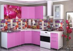 Кухня Кухня РиИКМ Вариант 10