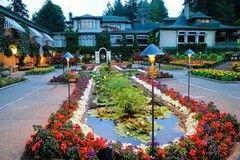 Фотообои Фотообои Vimala Сад Виктории