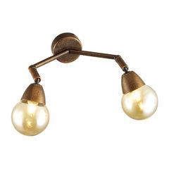 Настенный светильник Lumion Zianox 3596/2W