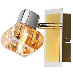 Настенно-потолочный светильник Blitz 13097-11