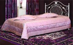 Кровать Кровать БелНордСтайл Феникс-1 160х200