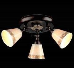Настенно-потолочный светильник Maytoni Spot ECO001-33-R