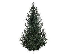 Новогодняя елка Новогодняя елка Greendeco Искусственная ель Forest Miracle 150 (689490)