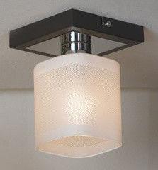 Настенно-потолочный светильник Lussole Costanzo LSL-9007-01