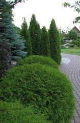 Ландшафтный дизайн Зелёная страна Пример 1