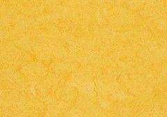 Линолеум Желтый линолеум Forbo (Eurocol) Marmoleum Real 3251