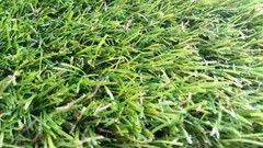 Ковровое покрытие Orotex Искусственная трава Cypress Point
