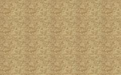 Декоративное покрытие ISOCORK Напыляемое пробковое 42C