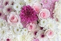 Фотообои Фотообои Vimala Букет роз и ромашек