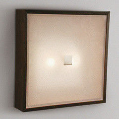 Настенно-потолочный светильник Citilux CL940311