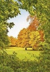 Фотообои Фотообои Твоя планета Осенний шепот