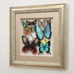 noname Сборка с разноцветными доминирующими бабочками (92с-03)