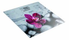 Напольные весы Напольные весы Redmond RS-733 (орхидея)