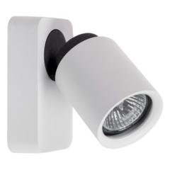 Настенный светильник MW-Light Астор 545020401