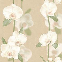 Обои Vimala Орхидеи 2193