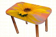 Обеденный стол Обеденный стол Мебельный конструктор Цветы Модель 9