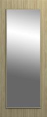 Межкомнатная дверь Межкомнатная дверь МегаПростор Techniks OZ